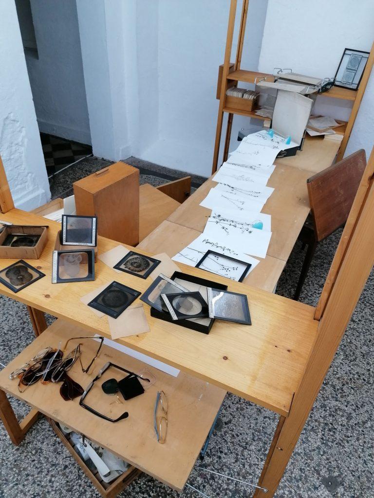 Tisch, Präparate. Galerie